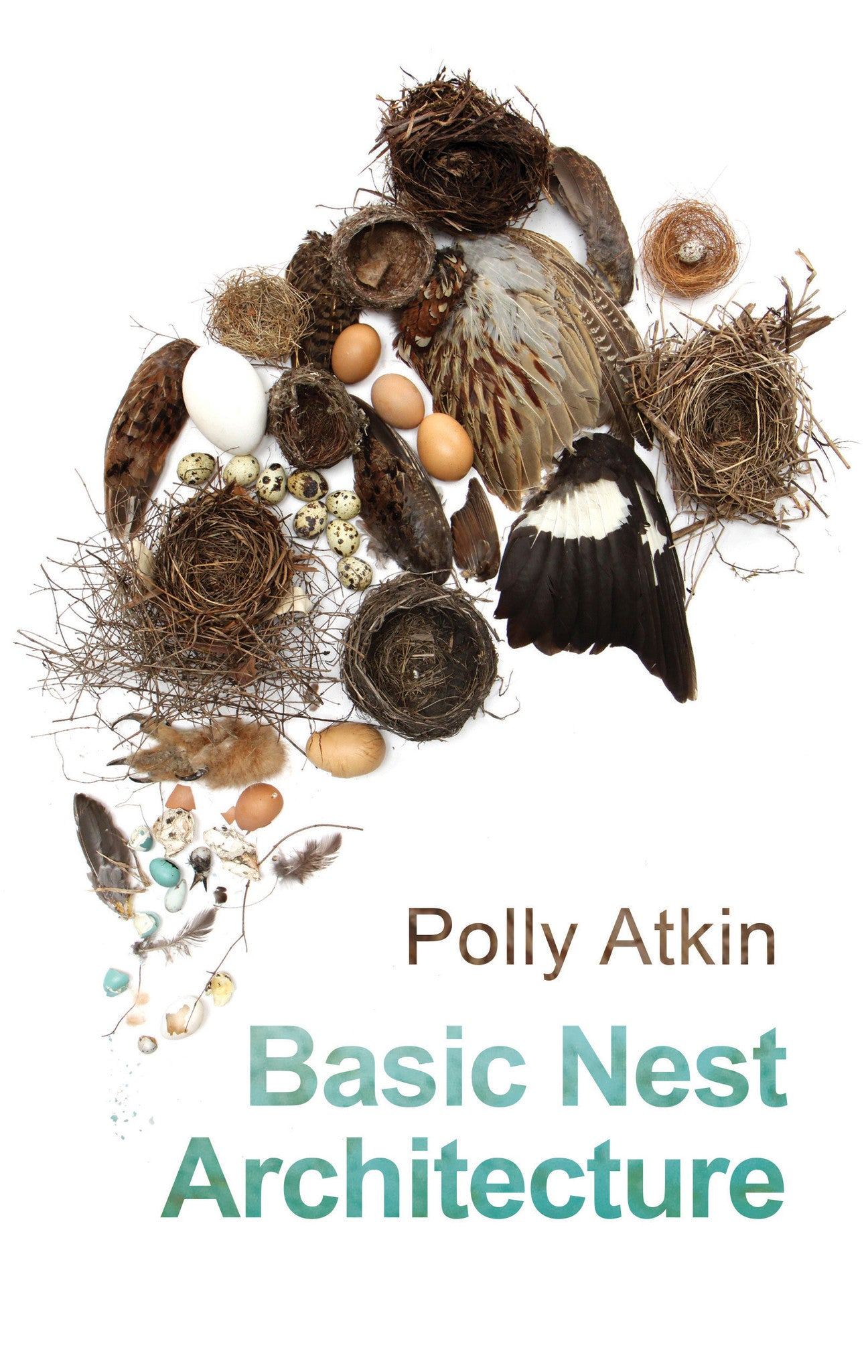 Basic Nest Architecture