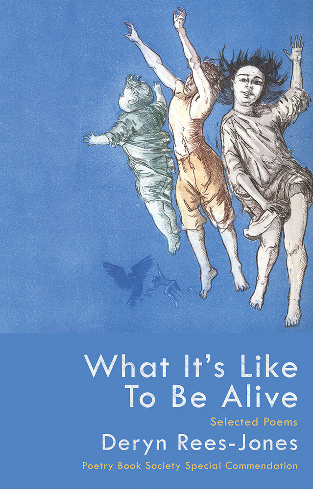 What it's Like to Be Alive: Selected Poems