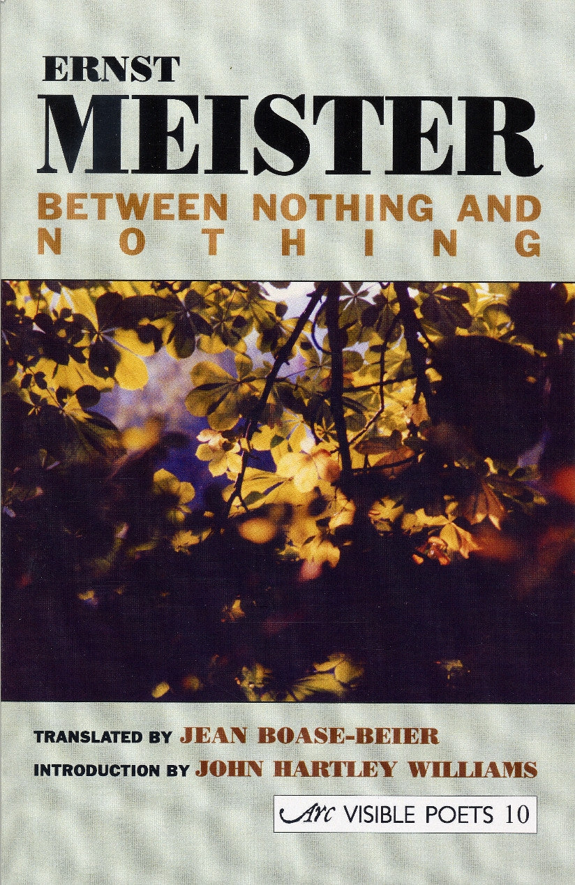 Between Nothing and Nothing: Selected Poems