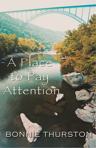A Place to Pay Attention