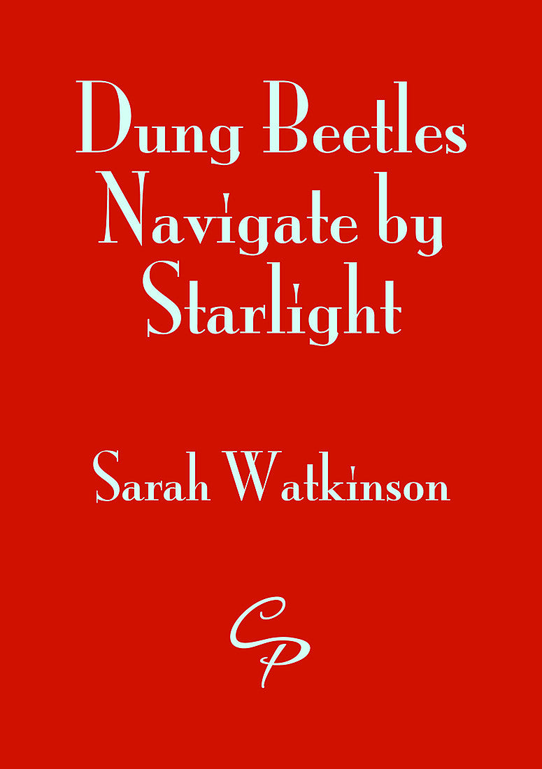 Dung Beetles Navigate by Starlight