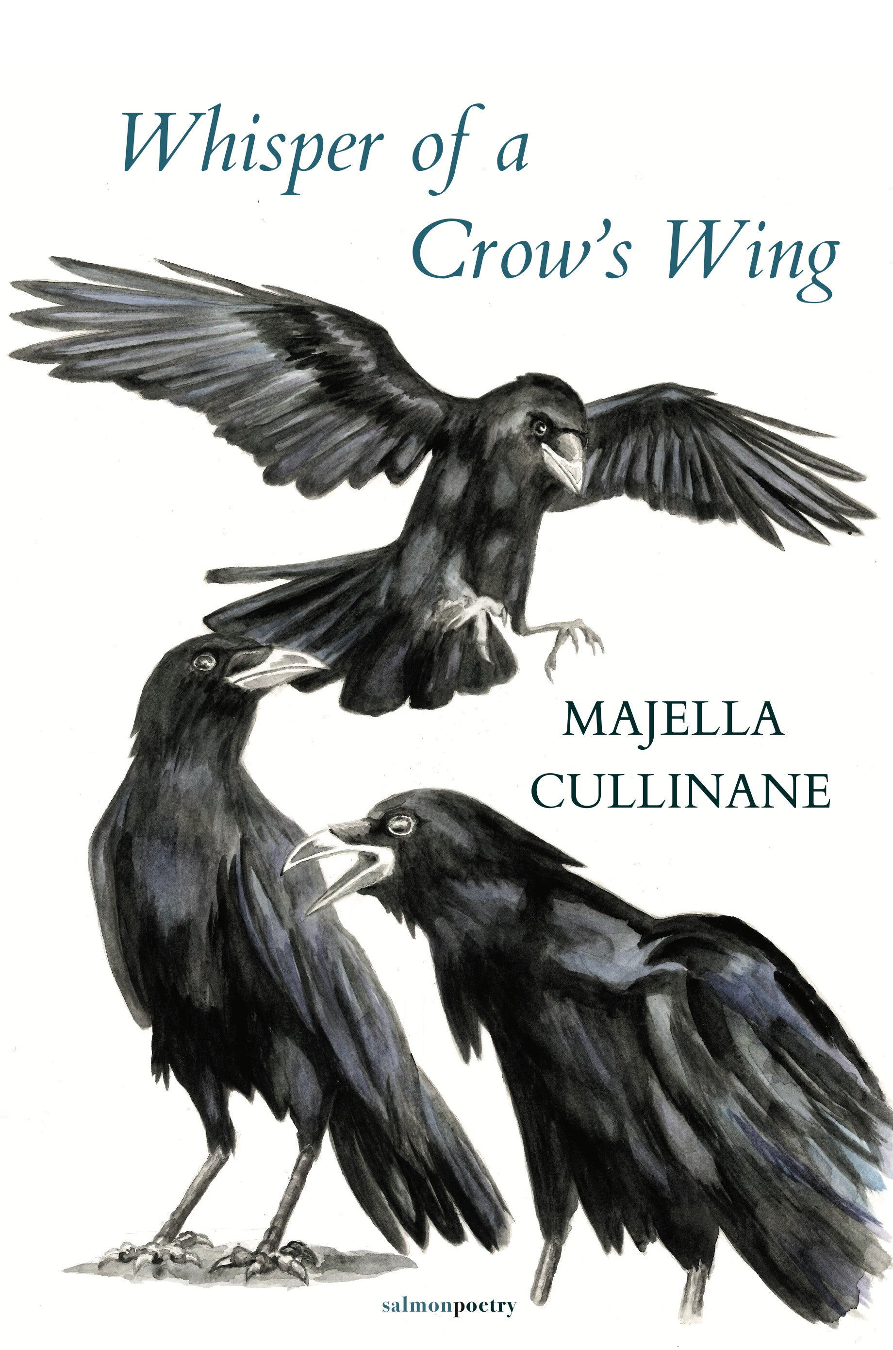 Whisper of a Crow's Wing
