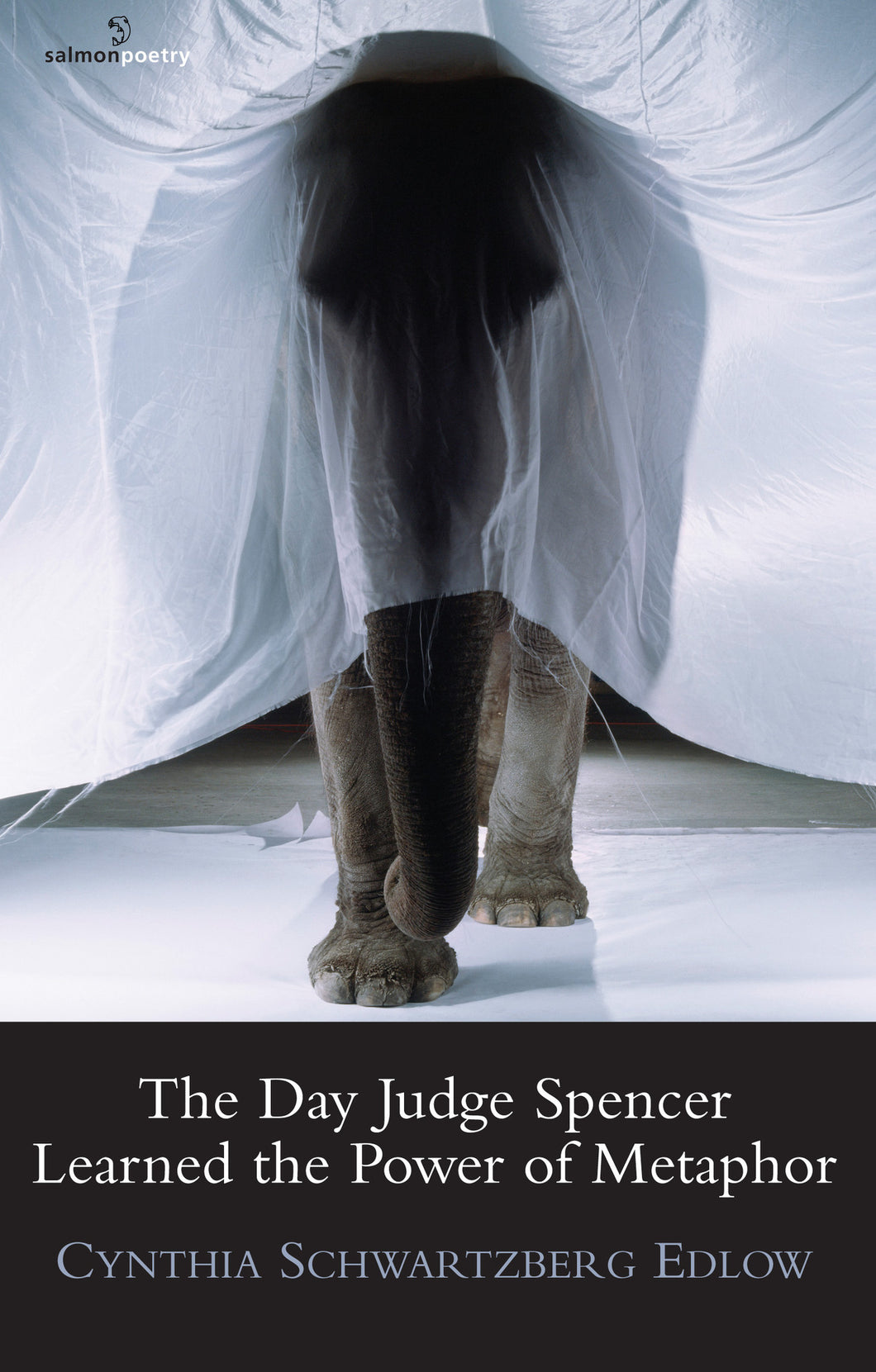 The Day Judge Spencer Learned the Power of Metaphor
