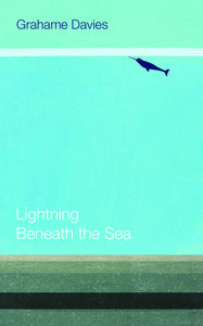 Lightning Beneath the Sea