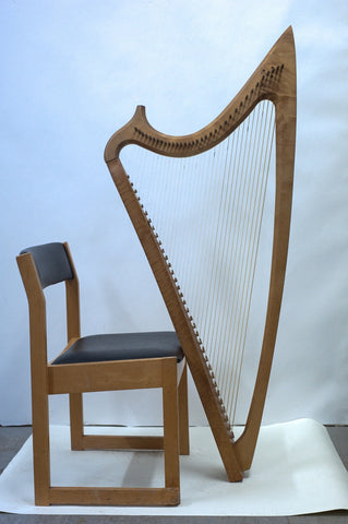 The Harp in Wales
