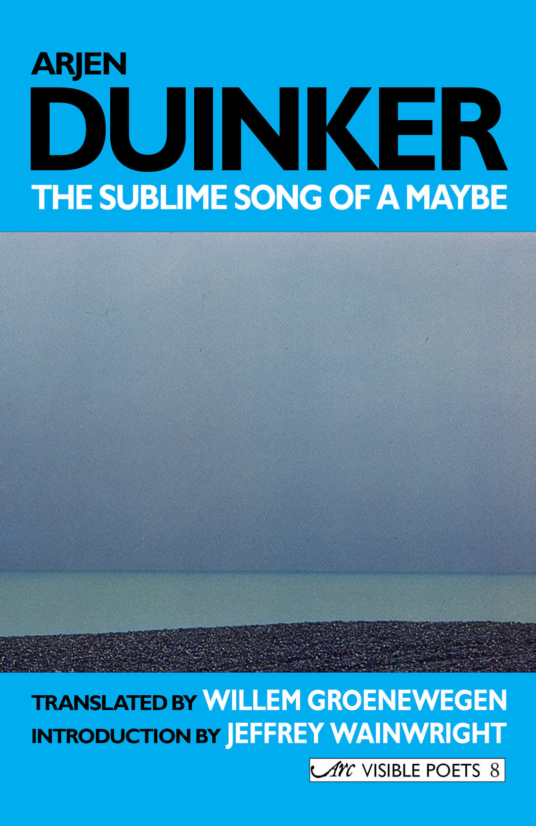 The Sublime Song of a Maybe: Selected Poems
