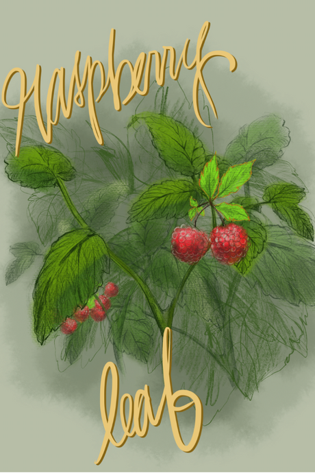 I be-leaf it's raspberry magical
