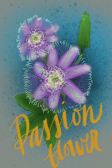 Passion of the Flower