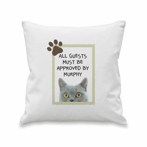 Sociable Cat Cushion