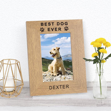 Best Pet Ever Photo Frame - Under A Rainbow