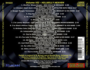 Best of Tennessee & Republic Records, Vol. VII - Hillbilly Heaven