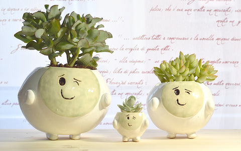 Smiling Pot | Green | Wink