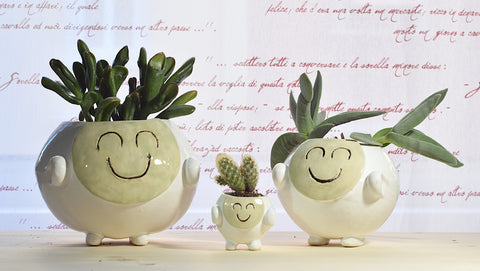 Smiling Pot | Green | Relax