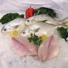 Fresh Pompano Fillet, 3-4 Pcs, 4 Oz. - 1 Lb