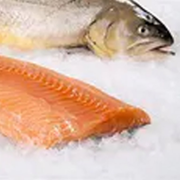 Fresh Arctic Char Fillet, 2 - 8 oz Portions / 1 lb