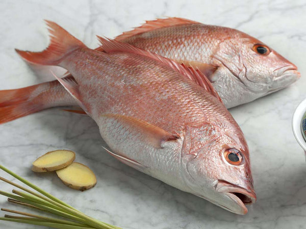 FRESH RED SNAPPER WHOLE 2-2 1/2 LB EA
