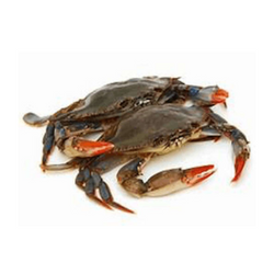 FRESH MARYLAND SOFT SHELL CRABS, 1/2 DOZEN (CLEANED)