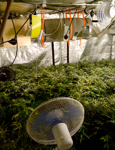 Increasing the temperature in your growing room