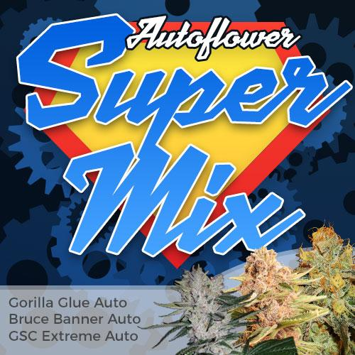 Autoflower Super Mix