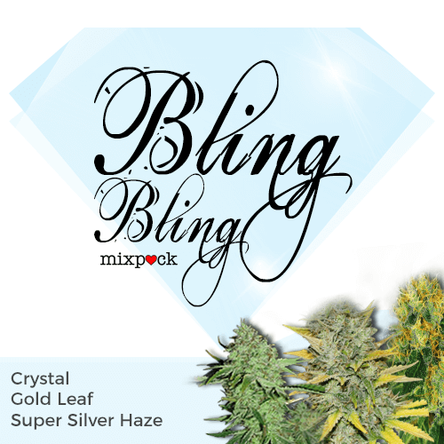 bling bling seed mixpack - high cbd and thc strains