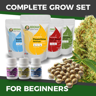 The Complete Marijuana Seed & Grow Set (Beginners)