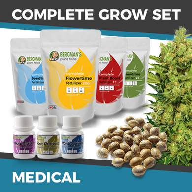 medical cannabis grow kit