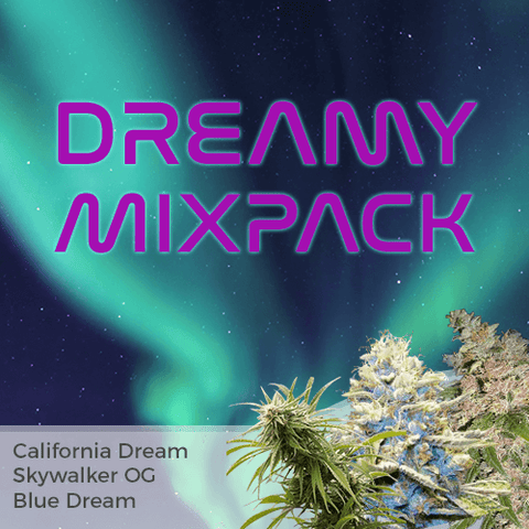Dreamy Mixpack