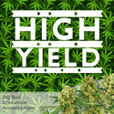 high yield marijuana seeds