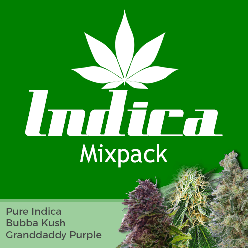 Indica Mixpack
