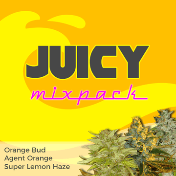 juicy citrus weed seed mixpack