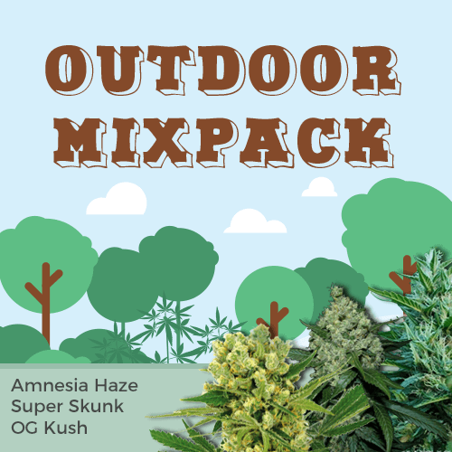 outdoor strains seed mixpack
