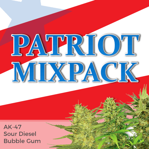 patriot mixpack autoflower seeds
