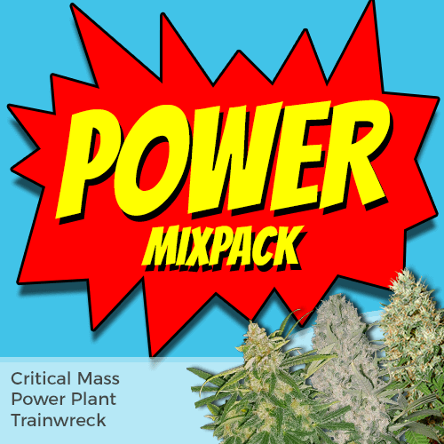 Power Hitters Weed Seed Mixpack
