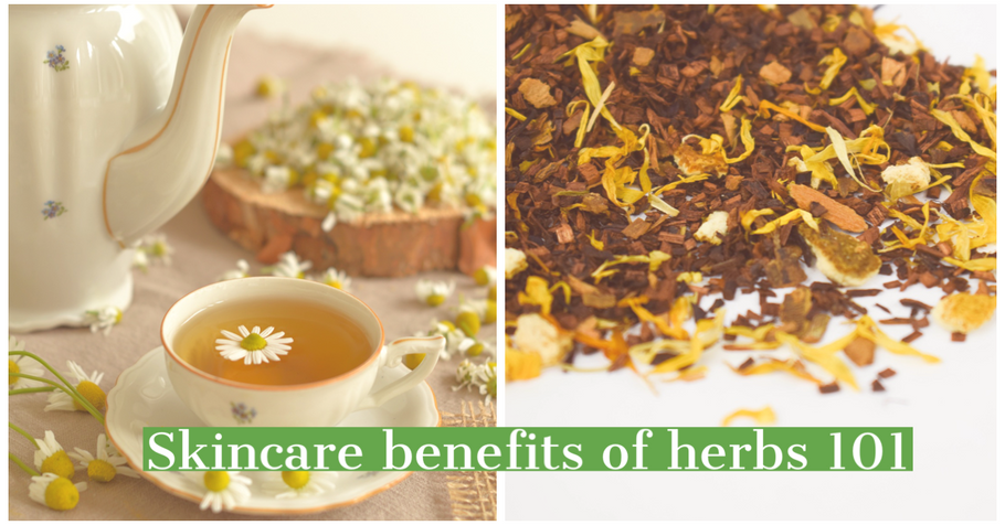Skincare benefits of our top favorite herbs