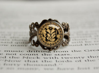 Monster Hunter antique style ring Felynes