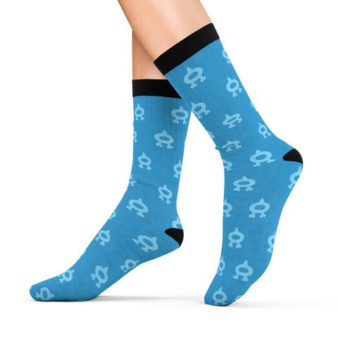 Pokemon Team Aqua Socks