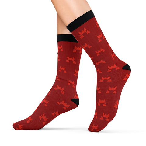 Pokemon Team Magma Socks