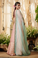 Blush Pink Parrot Kurta with Lehenga Set