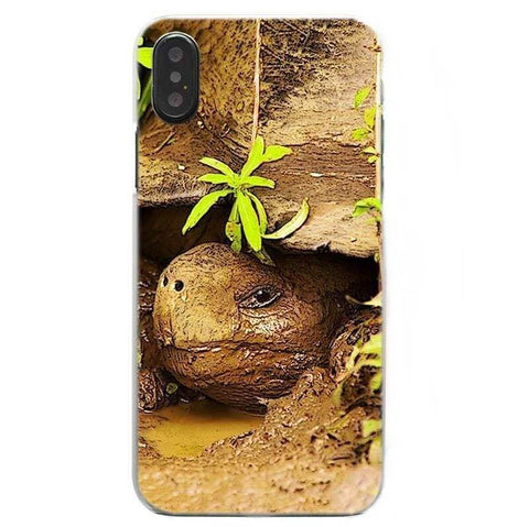Protection iPhone Tortue Curieuse