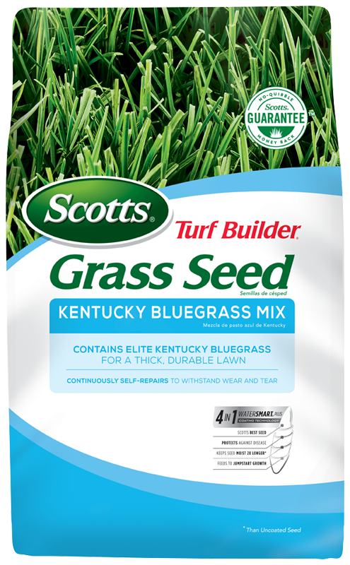 Scotts Turf Builder Kentucky Bluegrass Seed Mix
