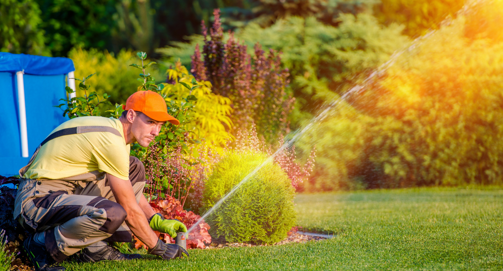 guide to the best lawn care companies
