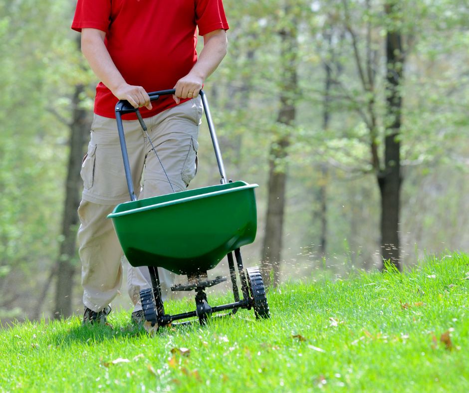 lawnbright seeding in spring instructions