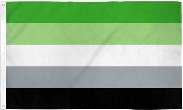 Aromantic Pride Flag 3' x 5'