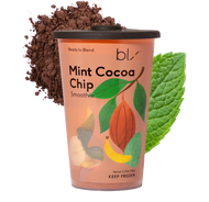 Mint Cocoa Chip