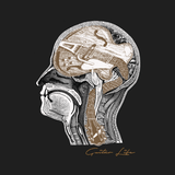Guitarist's Brain - Mens - V-Neck - Small to 3XL
