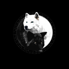 Yin Yang Wolf Inspired by Witchcraft & Wicca - Mens - V-Neck - Small to 3XL