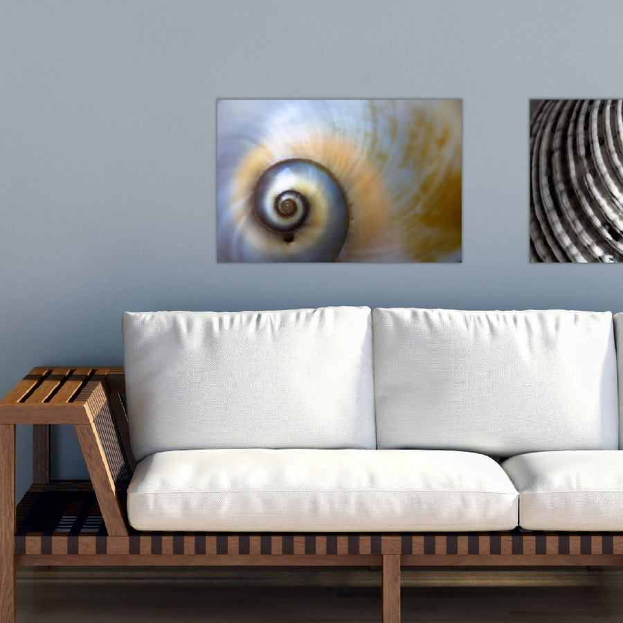 Deco Canvas Print, Spiral