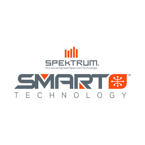 Spektrum Smart S1100 AC Charger, 1x100W