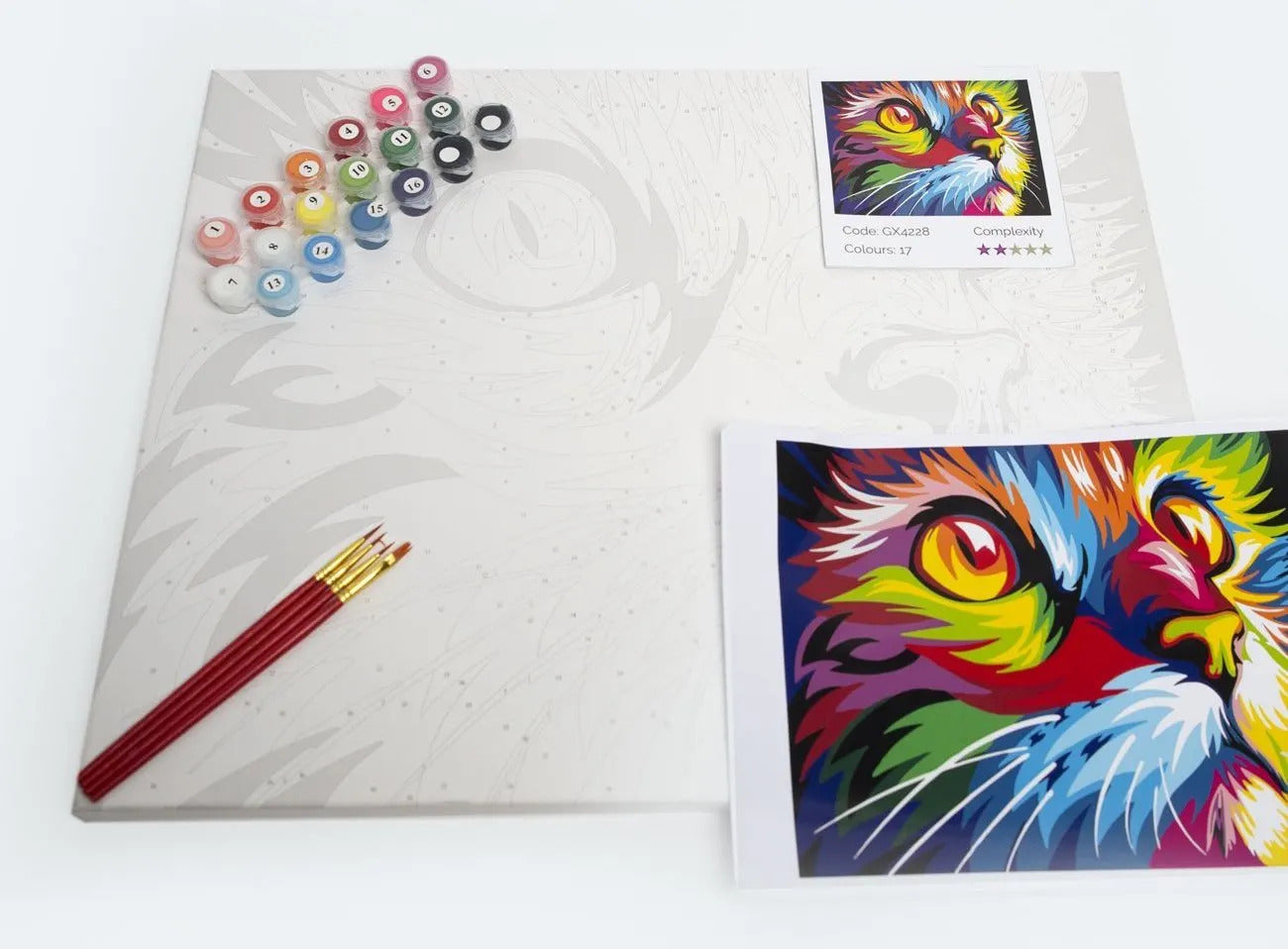 Paint By Numbers For Adults kit - Personalize Everything