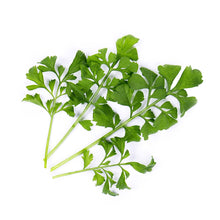 Load image into Gallery viewer, Garden Cress Lingot®